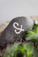 Dark pebble with engraved symbol painted white
