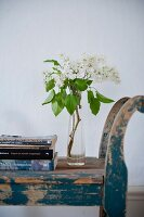 Glass vase of white lilac and stack of books on vintage blue wooden bench