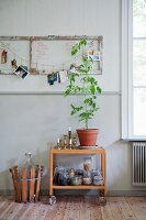 Houseplant and storage jars on serving trolley below old door hung on wall as pinboard