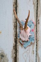 Hand-decorated deer antlers on pale blue wooden plaque on shabby-chic board wall