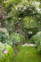 Lawn path leading through rose arch in idyllic garden