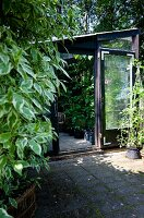 Greenhouse with open glass door and view of potted plants