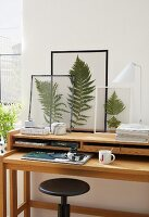 Fern leaves in clear foil or between panes of glass with masking tape frames