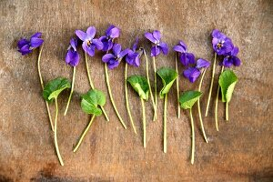 Violets on wooden surface (top view)