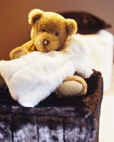 Cuddly teddy bear and faux-fur hot-water bottle