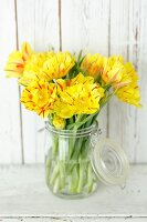 Yellow tulips in preserving jar