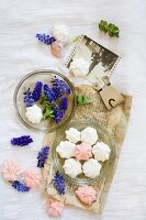 Pink and white meringues in glass dish decorated with grape hyacinths