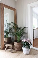 Potted palm and hydrangea in front of rustic full-length mirror in corner