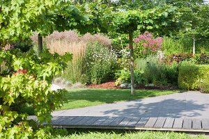 Wooden walkway leading through well-tended summer garden