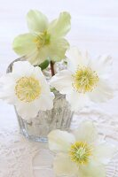 Hellebores in silvered glass vase on white crocheted doily