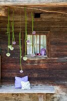Alliums hung above bench in front of lattice window in façade of rustic farmhouse