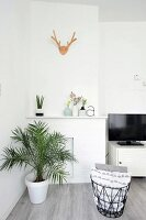 Potted palm in front of disused white fireplace and vase next to TV cabinet