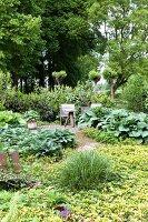 Sommerlicher Garten mit Terrassenplatz
