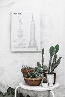 Sketches of New York on wall above plants on table