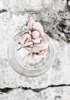 Pale hydrangea flowers in drinking glass on stone surface