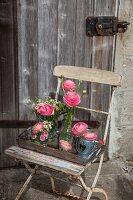 Ranunculus in various vases on old chair