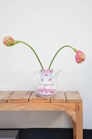 Two tulips in retro coffee pot on rustic wooden bench