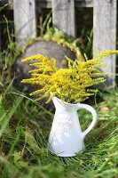 Flowers in ceramic jug in meadow