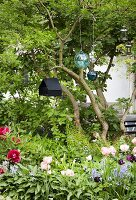 Spring flowers, suspended glass spheres and bird nesting box in garden