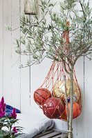 Balls in net hung on white board wall next to small olive tree