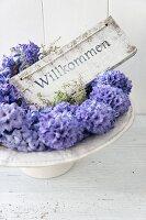 Willkommensschild auf einem Tortenfuß mit blauen Hyazinthen