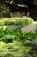 View across garden pond to shady seating area