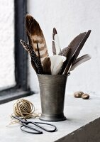 Various feathers in pewter beaker