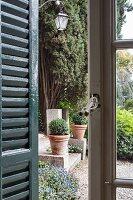 Blick durch Sprossenfenster und Fensterladen in den Garten