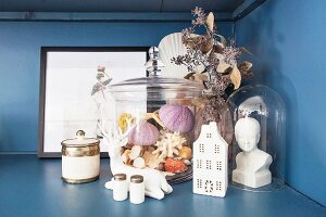 Collection of sea shells, stag figurine and bust of woman under glass cover