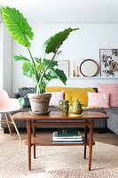 Crockery and house plant on retro coffee table on sisal rug in front of couch with scatter cushions