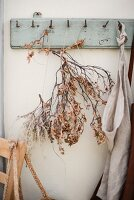 Branch of dried leaves hung from old coat rack