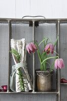Snake's head fritillaries and linen napkins arranged in upright metal cutlery drawers