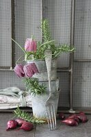 Vintage-style arrangement of stacked zinc pots, snake's head fritillaries, onions and fork