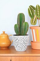 Cacti in retro planter next to painted terracotta pot