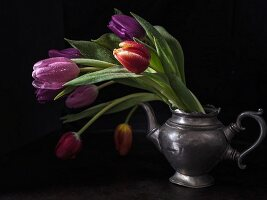 Tulips in pewter teapot