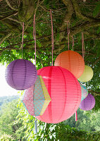 Lanterns hung from tree