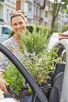 A woman holding a tray of Mediterranean plants next to a car
