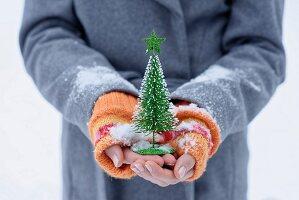Girl holding little Christmas tree