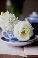 Romantische weisse Blüten in Teetasse auf Buch