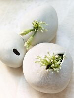 Garlic flowers in ceramic vases