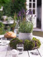 Blumentopf mit Lavendel in einem Kranz aus Moos