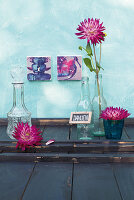 Dahlias in glass bottle and in glass