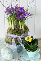 Kalanchoe, crocuses and moss planted in teacups and painted Easter egg