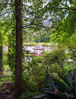 Blick durch dicht bewachsenen Garten auf Pavillon am Teich