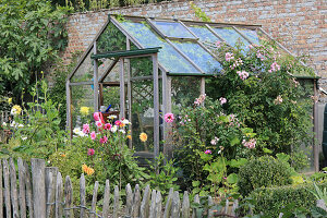 Paling fence around cottage garden with greenhouse