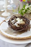 Osternest mit gesprenkelten Eiern und Federn als Tischdeko