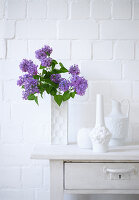 Purple lilac in white vase and other decorative vases