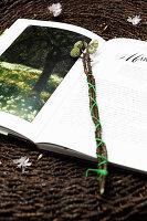 Zweige mit Knospen vom Papierbusch als Lesezeichen