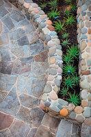 Agaven im Beet mit Steineinfassung