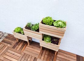 Selbstgebautes Hochbeet mit Salat auf mehreren Etagen